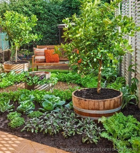 Backyard-Landscaping-ideas-43