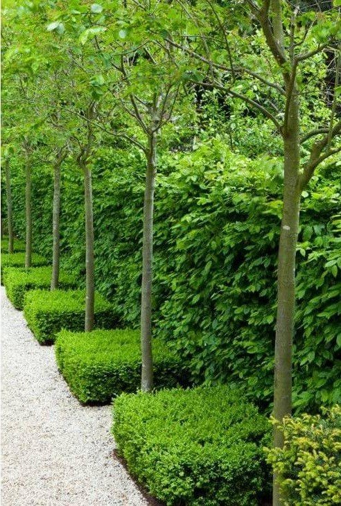 Must-Seen Garden Designs-10