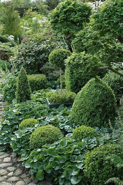 Must-Seen Garden Designs-8